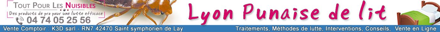 Lyon Punaises de Lit